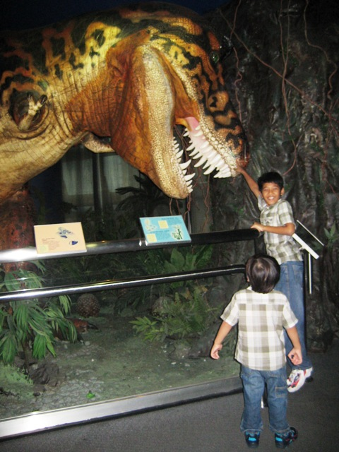 Taming dinosours with amar and amin